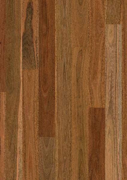 1 Strip Spotted Gum Gloss Titan Timber Flooring